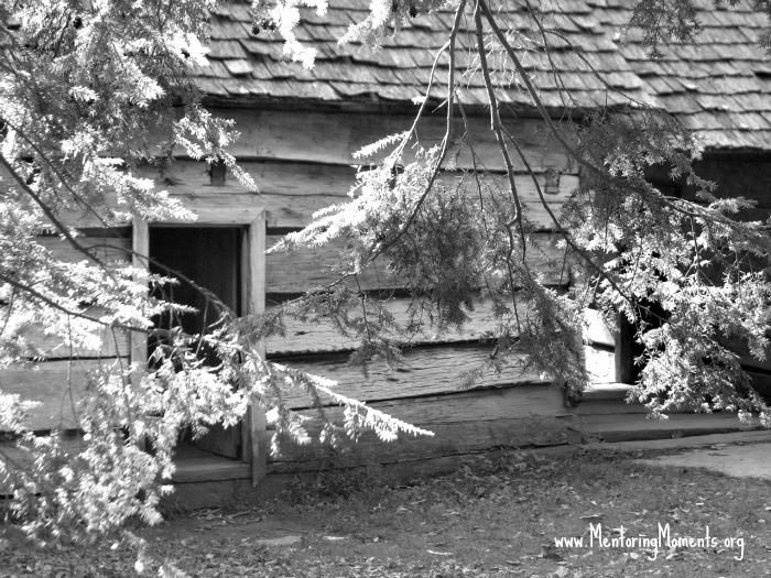 homestead6 / photo by Kellie Renfroe