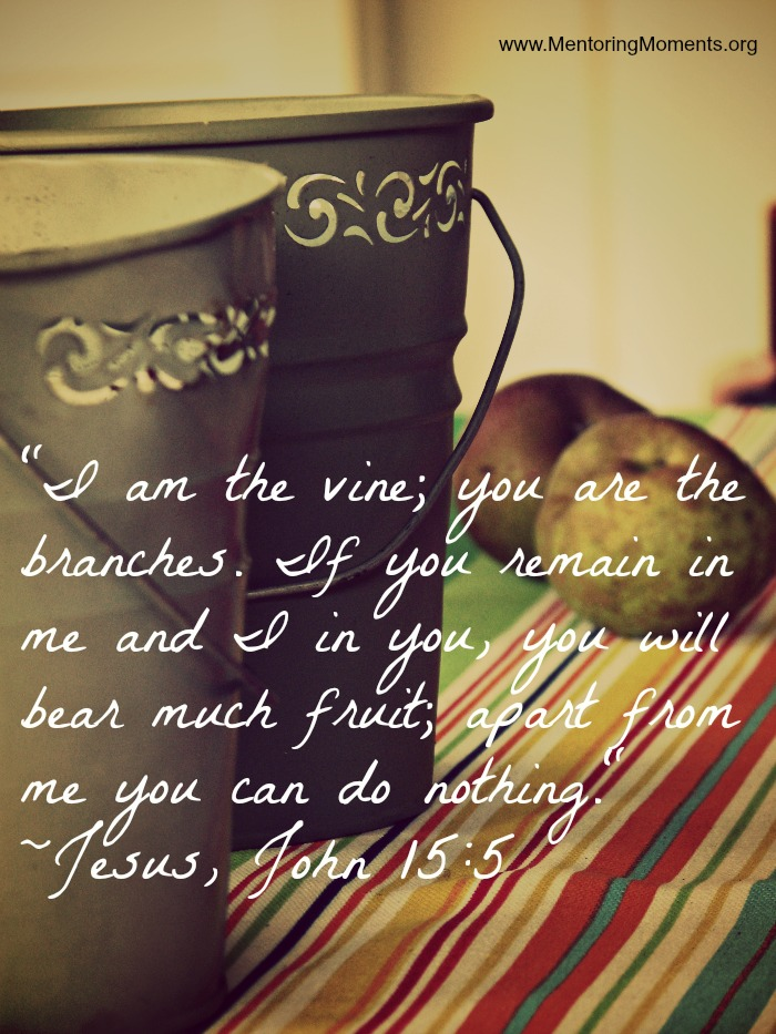 """""""I am the vine, you are the branches."""" Jesus, John 15:5"""