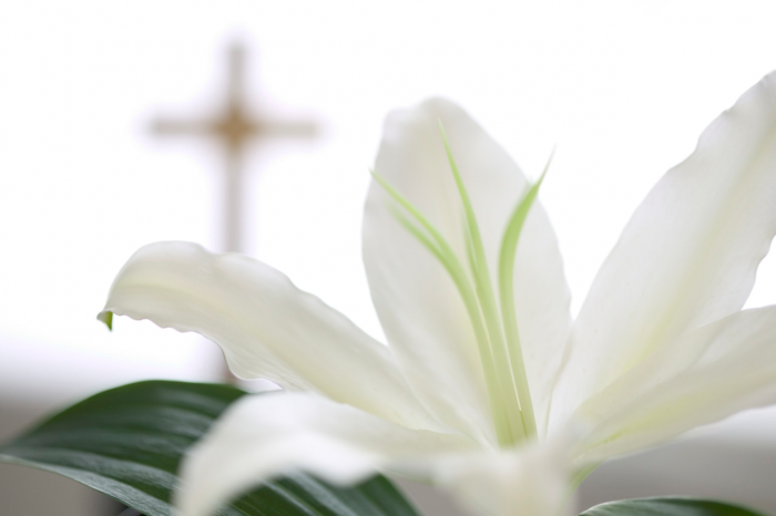 easter lily with cross