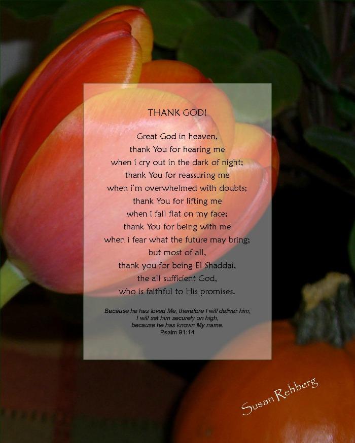 Thank God  / Susan Rehberg