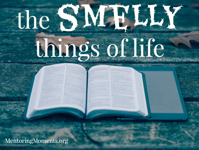 The Smelly Things of Life